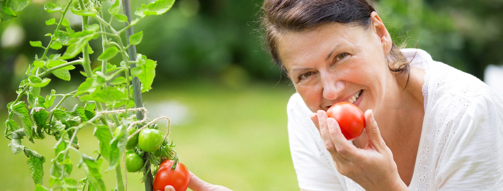 umweltfreundlicher_nachhaltiger_anbau_gemuesepflanzen_bayern_02